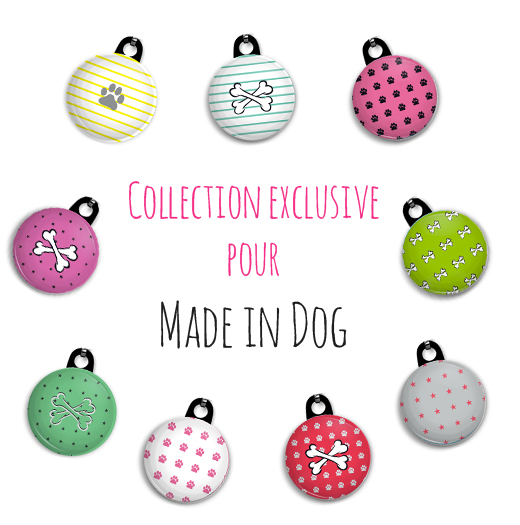 coll-exclusive-Made-in-dog