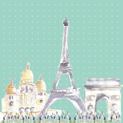 Coupon Paris menthe 40x40cm