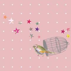 Coupon oiseau cage amour 20x20cm (prix mini, prix départ 7€)